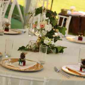 Catering Events - Petya and Stefan Wedding! - Picture 1 -   - Vip Catering Sofia