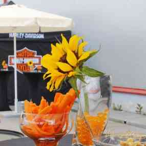 Catering Events - Harley on Tour - Picture 6 -   - Vip Catering Sofia