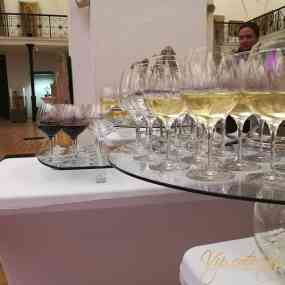 Catering Events - Luxury cocktail after the seminar - Picture 15 -  National Archaeological Museum - Vip Catering Sofia