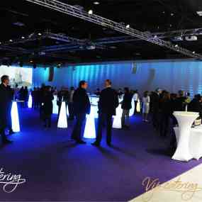 Catering Events - 90 Years Kaolin Bulgaria - Picture 15 -  National Palace of Culture - Hall 3 - Vip Catering Sofia