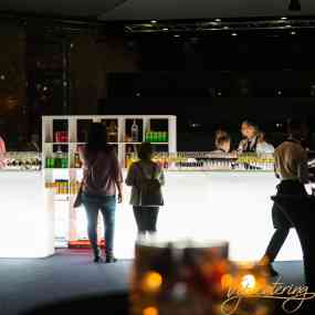 Catering Events - 140 Years Alexandrovska Hospital - Picture 7 -  National Palace of Culture - Hall 3 - Vip Catering Sofia