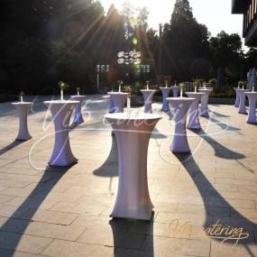 Catering Halls - National Museum of History - Picture 3 - Vip Catering Sofia